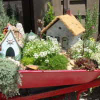 Make a Fairy Garden -Inspiration
